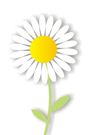 Marguerite Daisy clipart #6, Download drawings