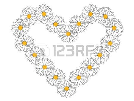 Marguerite Daisy clipart #19, Download drawings