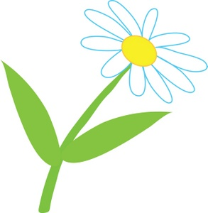 Marguerite Daisy clipart #3, Download drawings