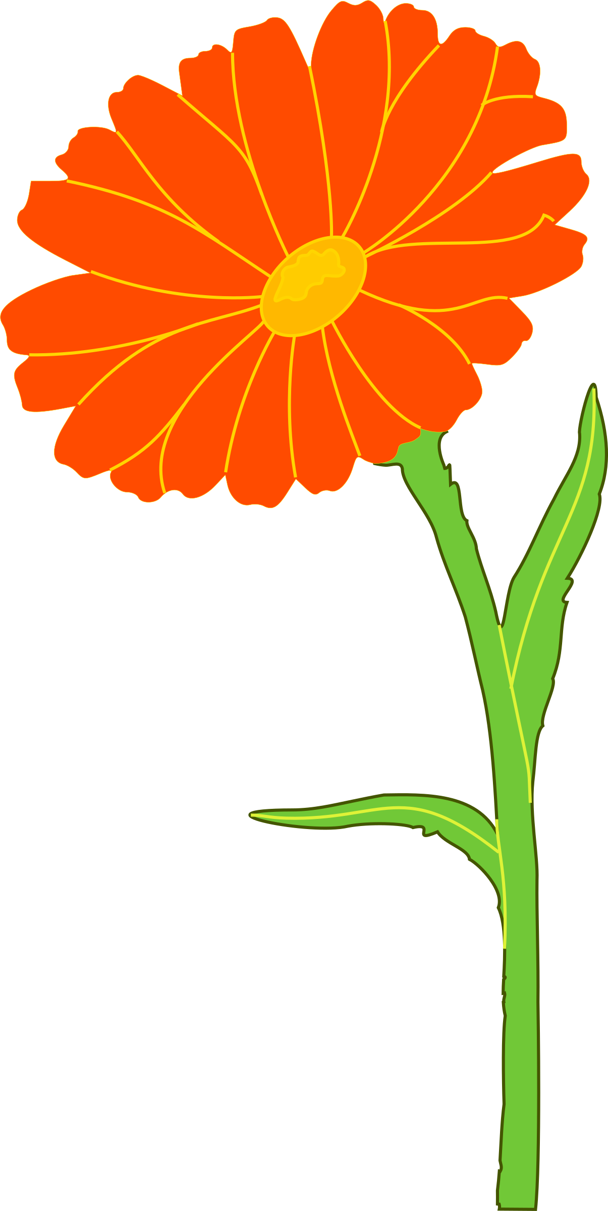 Marigold clipart #4, Download drawings