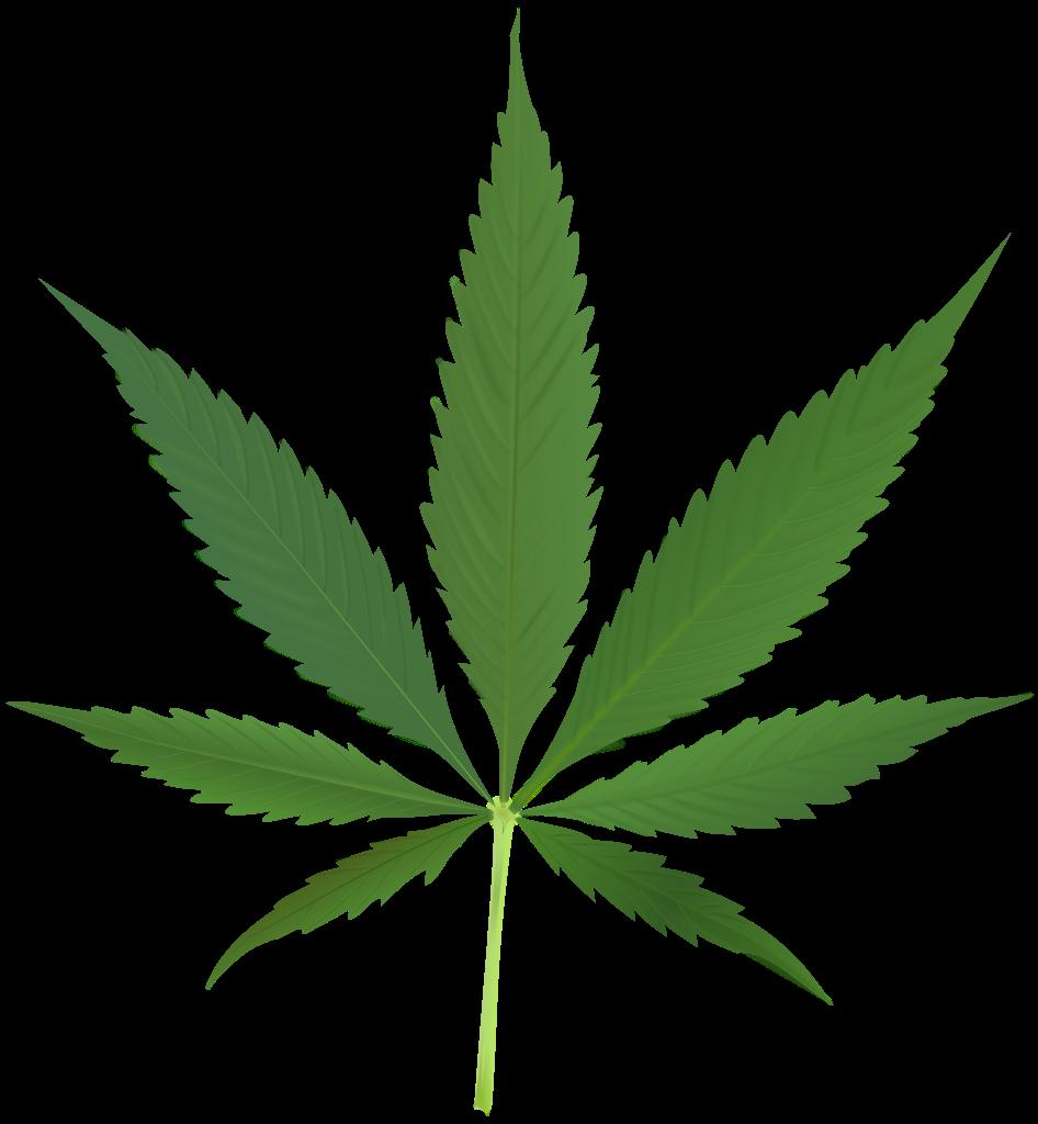 marijuana svg #161, Download drawings