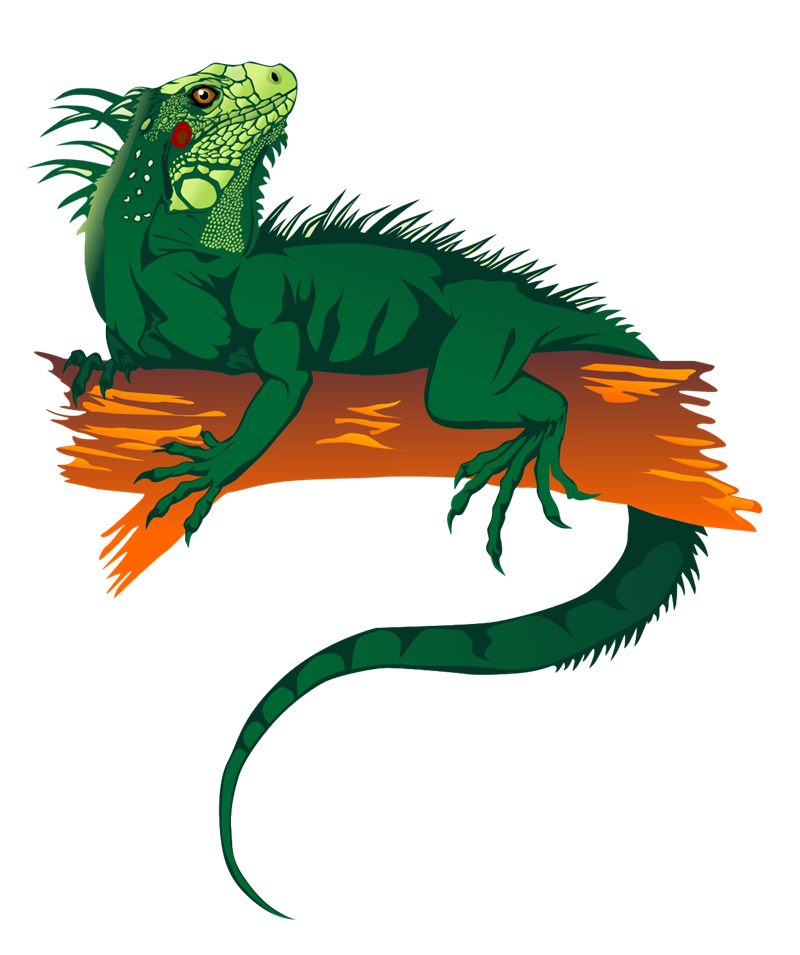 Marine Iguana clipart #2, Download drawings