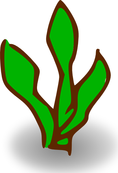 Marine Plant clipart #1, Download drawings