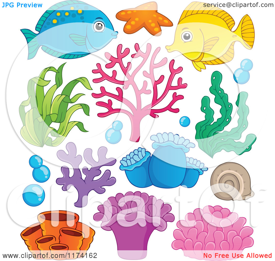 Marine Plant clipart #19, Download drawings