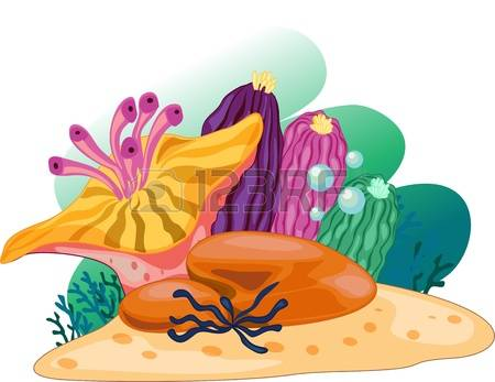 Marine Plant clipart #16, Download drawings