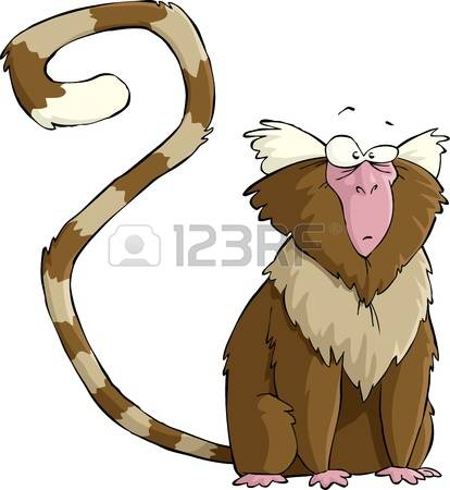 Marmoset clipart #17, Download drawings
