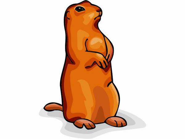 Marmot clipart #15, Download drawings