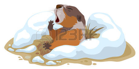 Marmot clipart #5, Download drawings