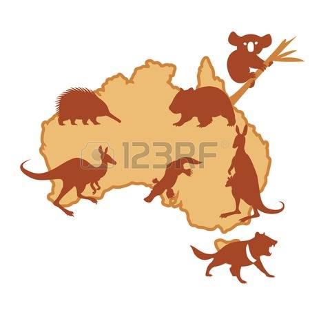 Marsupial clipart #3, Download drawings