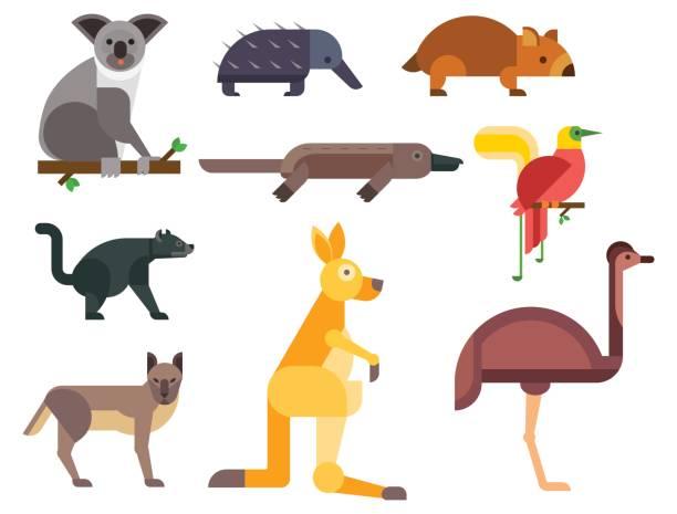 Marsupial clipart #1, Download drawings