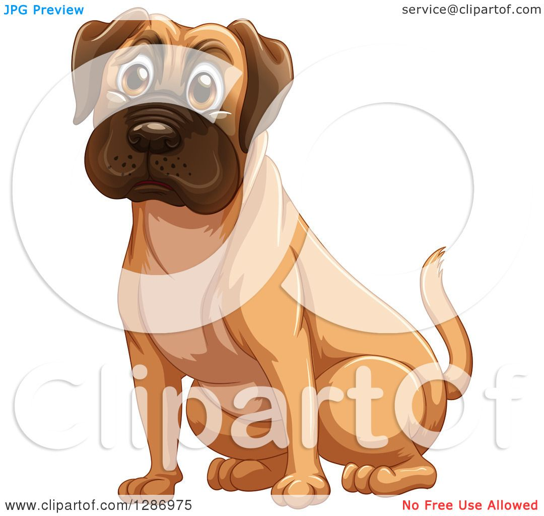 Mastiff clipart #3, Download drawings