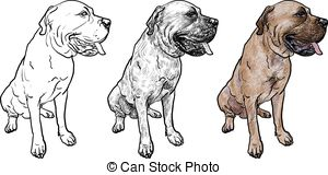 Mastiff clipart #4, Download drawings