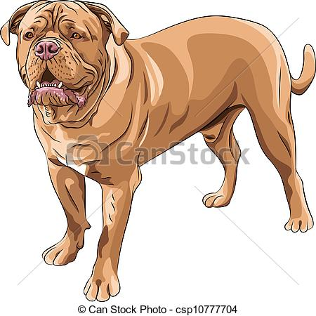 Mastiff clipart #16, Download drawings