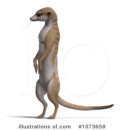 Meerkat clipart #9, Download drawings