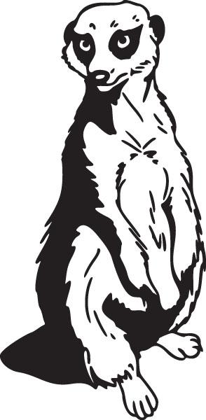 Meerkat clipart #1, Download drawings