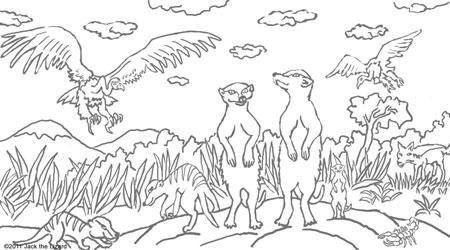 Meerkat coloring #1, Download drawings