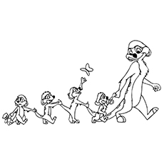 Meerkat coloring #6, Download drawings