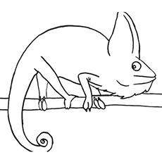 Megenta The Dragon coloring #6, Download drawings
