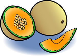 Melon clipart #19, Download drawings