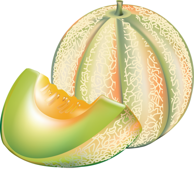 Melon clipart #4, Download drawings