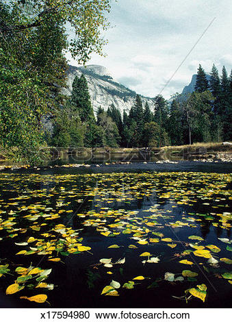 Merced River clipart #20, Download drawings