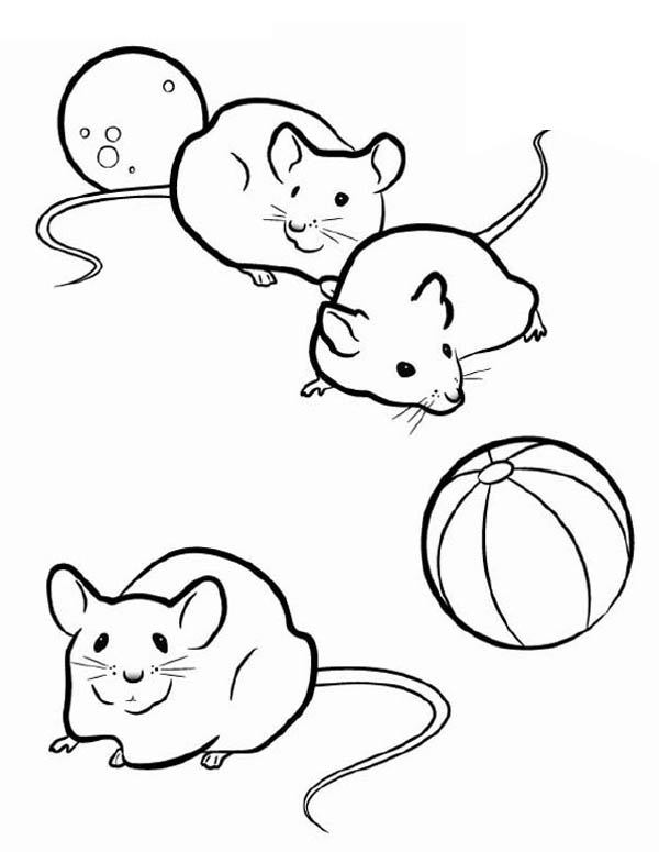 Mice coloring #9, Download drawings