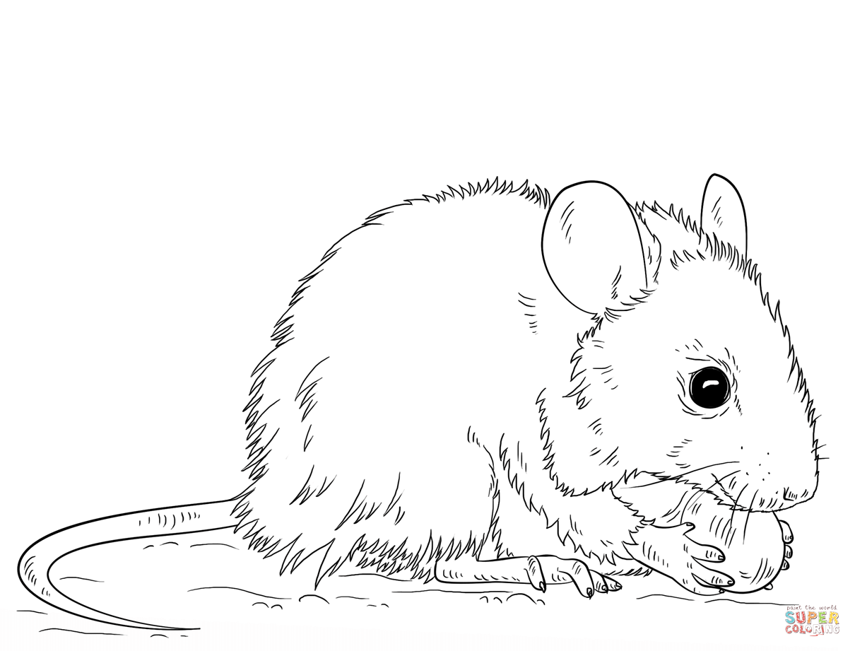 Mice coloring #15, Download drawings