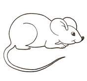 Mice coloring #19, Download drawings