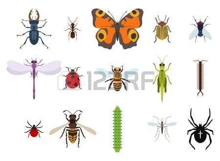 Midge clipart #18, Download drawings