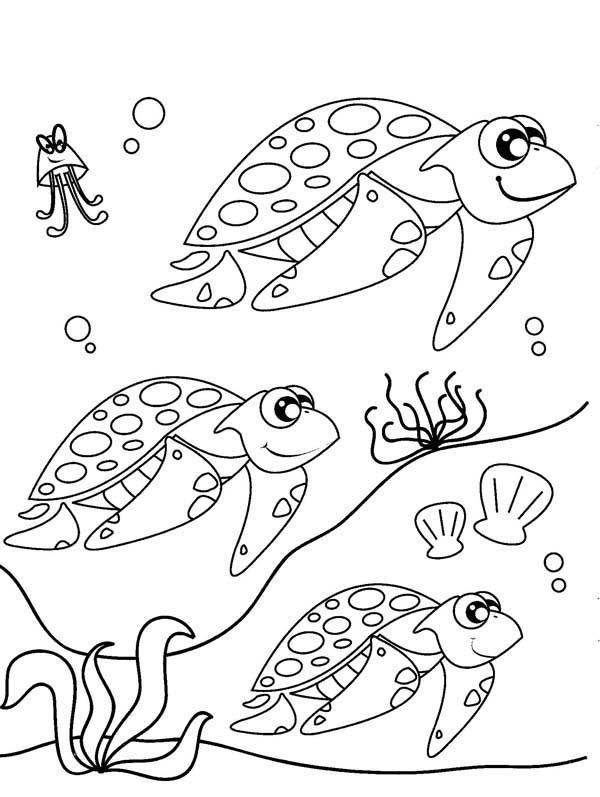 Migration coloring #16, Download drawings