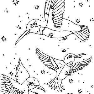 bird migration coloring pages - photo#10