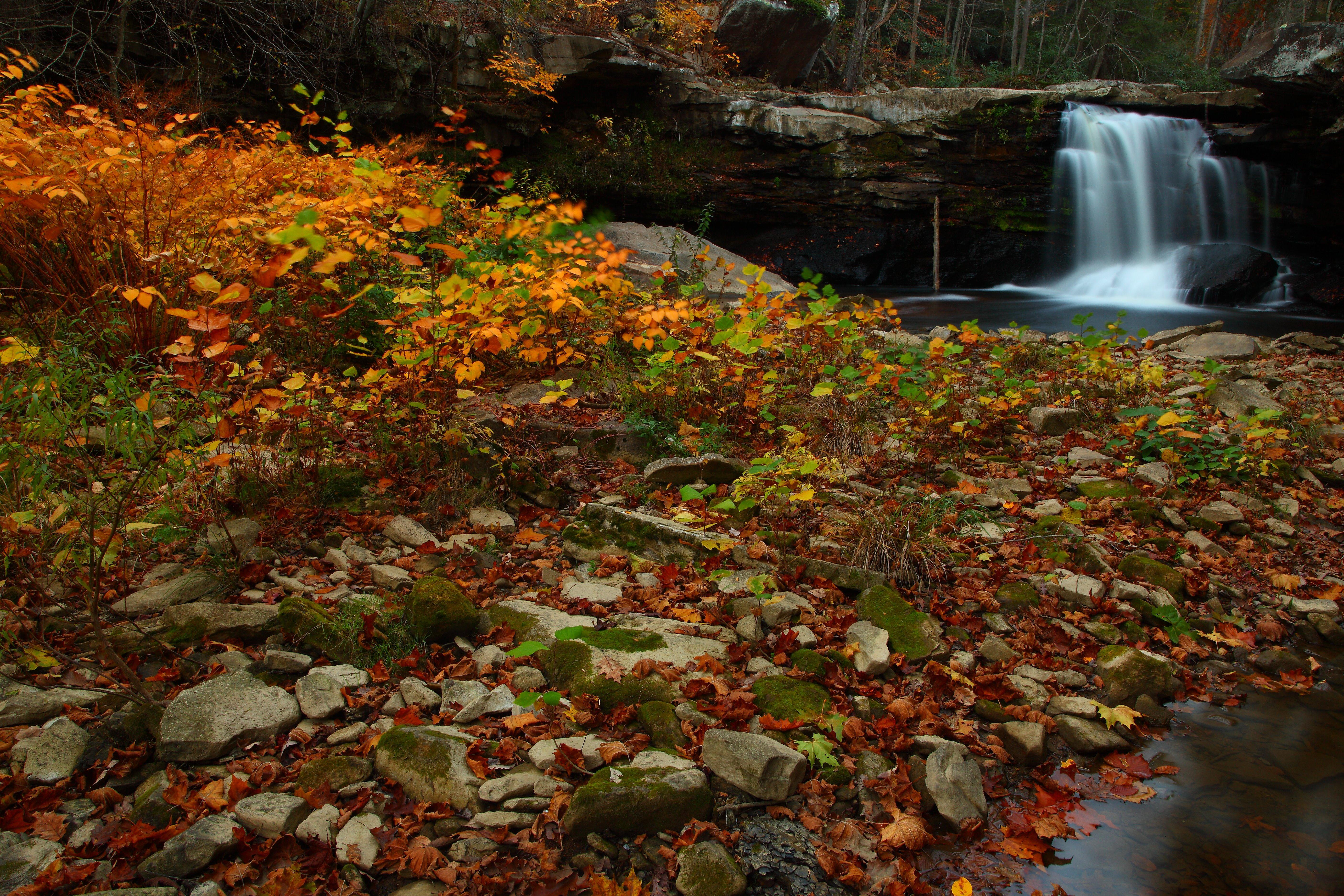 Mill Creek Waterfall svg #8, Download drawings
