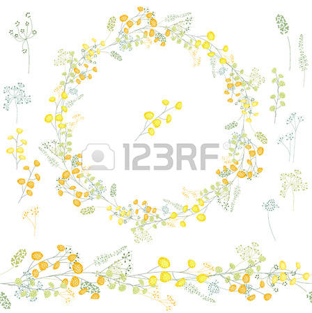 Mimosa clipart #2, Download drawings
