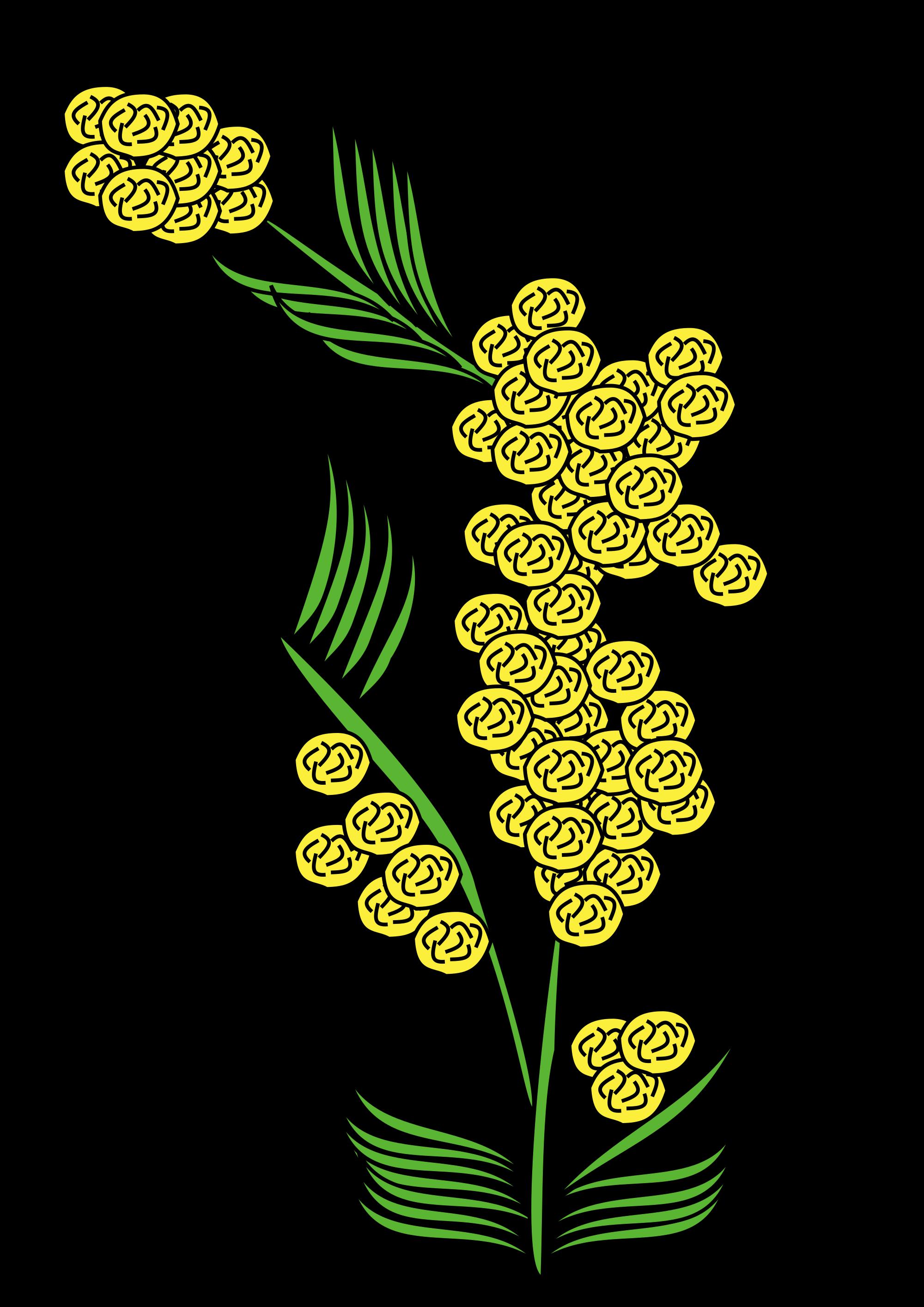 Mimosa svg #16, Download drawings