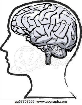 Mind clipart #4, Download drawings