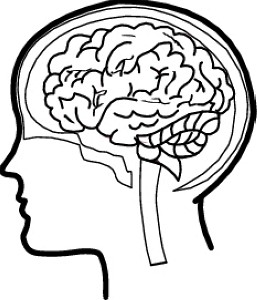 Mind clipart #19, Download drawings