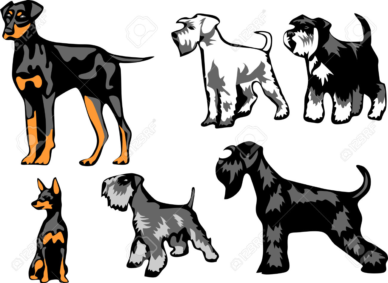 Miniature Pinscher clipart #12, Download drawings