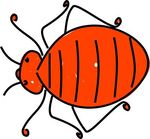Mite clipart #15, Download drawings