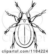 Mite clipart #12, Download drawings