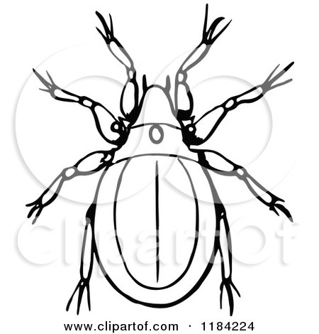 Mite clipart #16, Download drawings