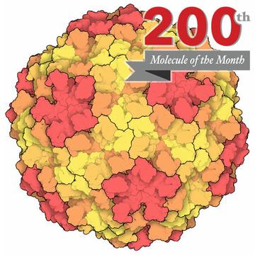 Molecule coloring #4, Download drawings