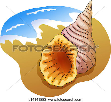 Mollusc clipart #11, Download drawings