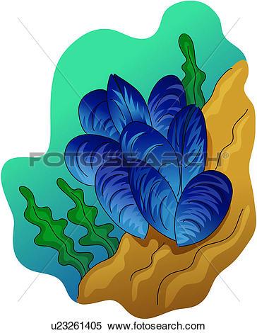Mollusc clipart #1, Download drawings