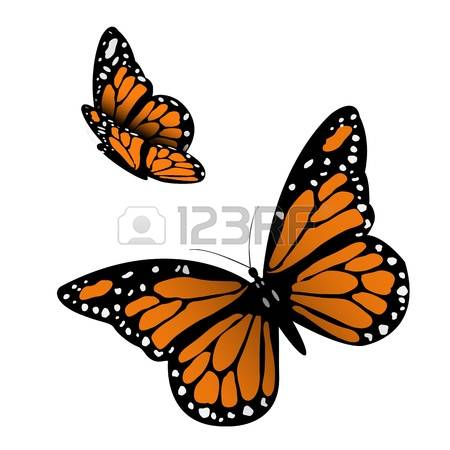 Monarch Butterfly clipart #15, Download drawings