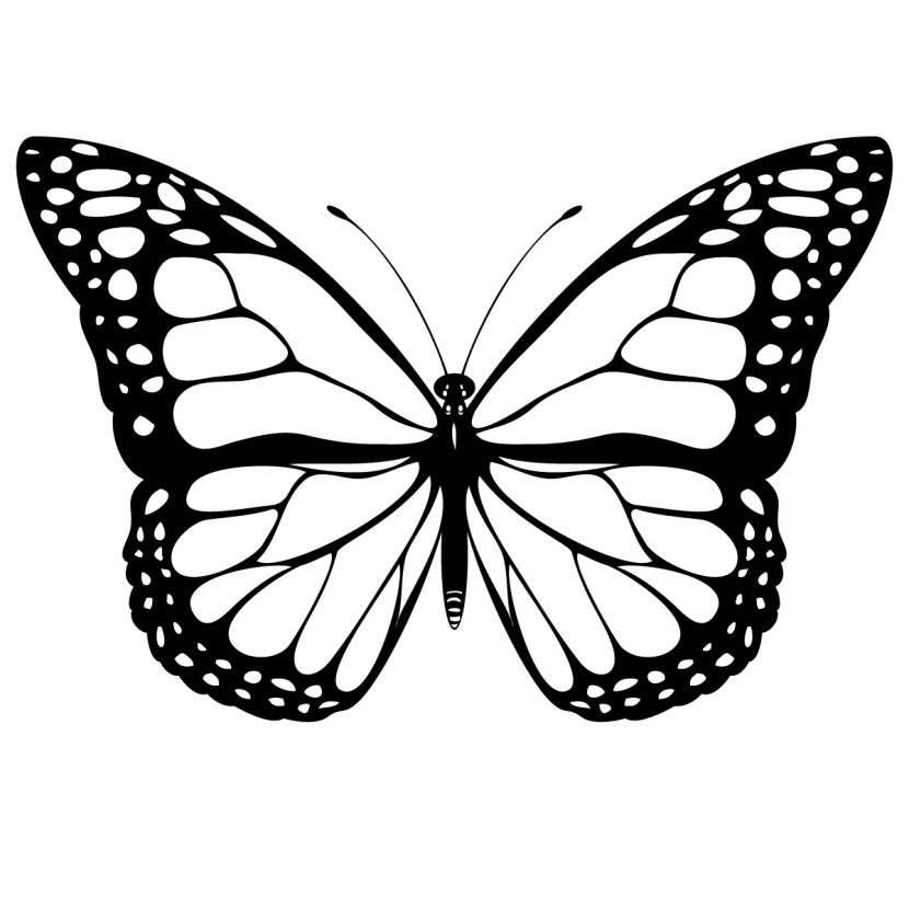 Monarch Butterfly clipart #5, Download drawings