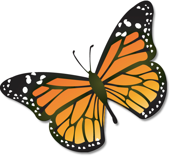 Monarch Butterfly clipart #19, Download drawings
