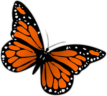 Monarch Butterfly clipart #20, Download drawings