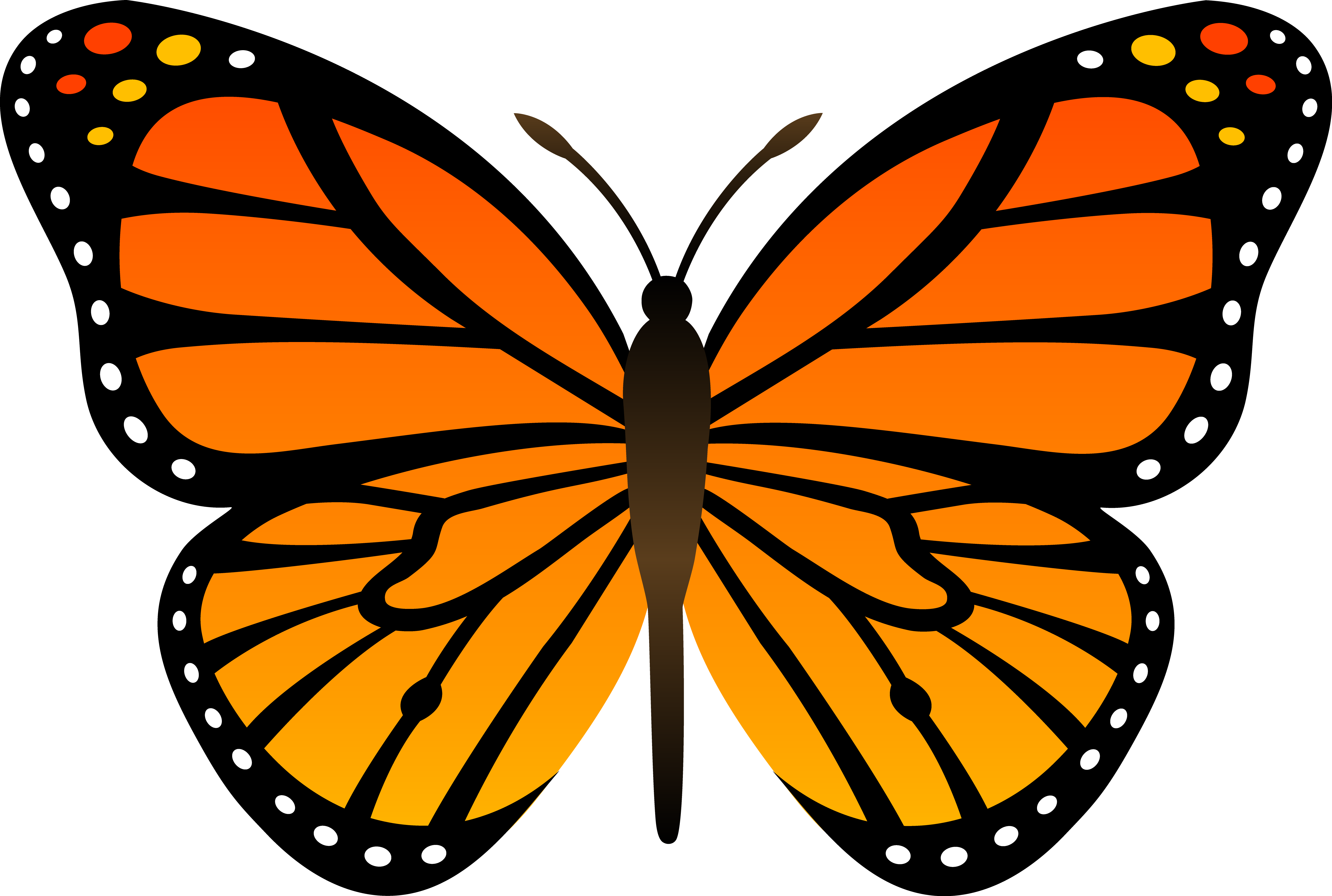 Monarch Butterfly clipart #7, Download drawings