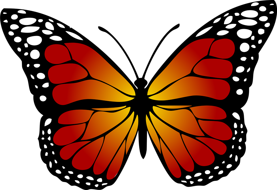 Monarch Butterfly clipart #6, Download drawings