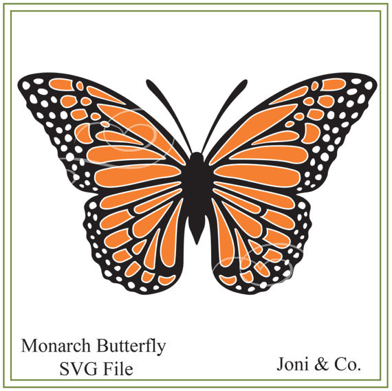 Monarch Butterfly svg #12, Download drawings